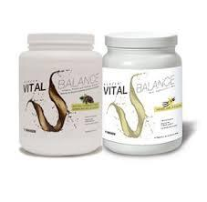 Nikken Vital Balance Chocolate,Vanilla Full Nutrition, functional food